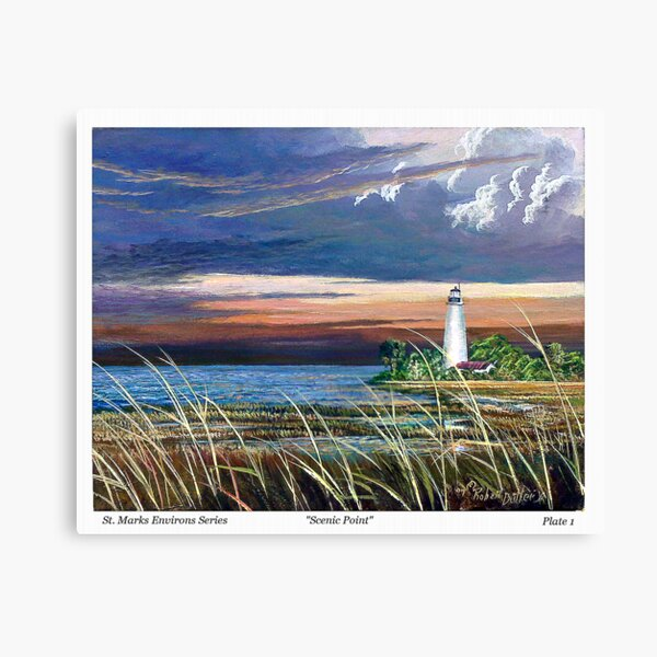 Scenic Point - St. Marks Light Canvas Print