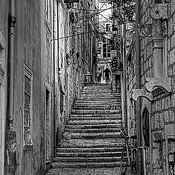 Watch Your Step - B&W by tomg