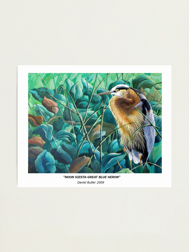 "Alternate view of ""Noon Siesta-Great Blue Heron"" Photographic Print"