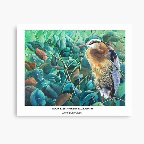 """""""Noon Siesta-Great Blue Heron"""" Metal Print"""