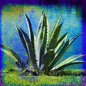 Aloha Blue by susanne49