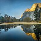 yosemite national park scenery by ALEX GRICHENKO