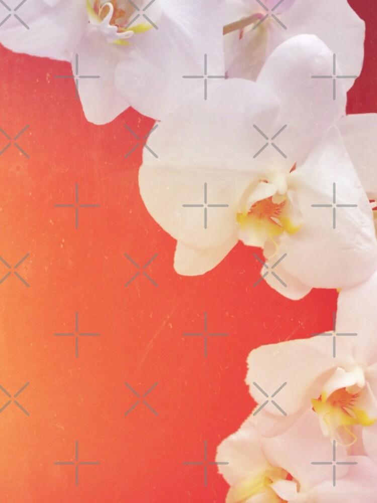 Orange Orchid by DeborahMcGrath