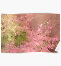 Pink Rain Poster