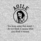 The Agile Bride by codysechelski