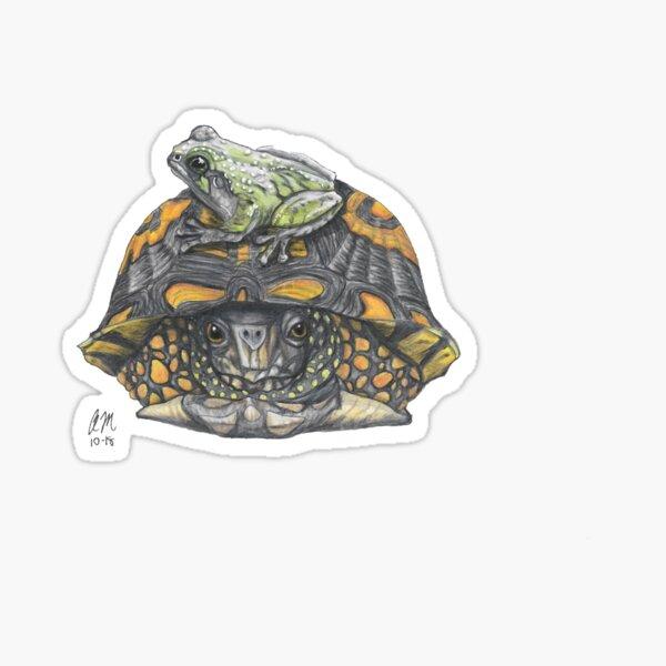 Frog On Turtle Sticker