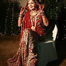 The Bride by Vivek Bakshi