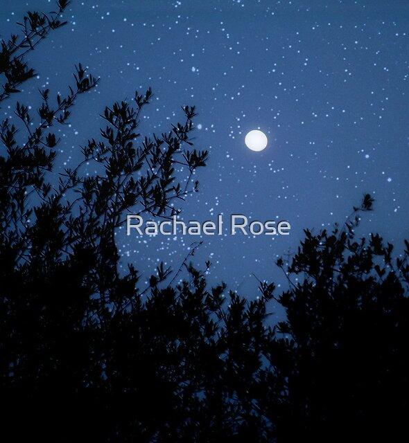 Stary Stary Night by Rachael Rose