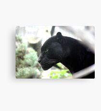 Lienzo Pantera negra