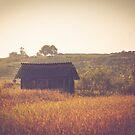 Countryside by Katayoonphotos