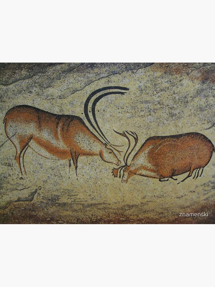 #CavePaintings #CaveDrawings #cave #paintings #drawings #CavePaintingsInFrance by znamenski