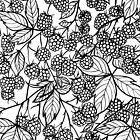Raspberries hand drawn pattern by Katerina Kirilova