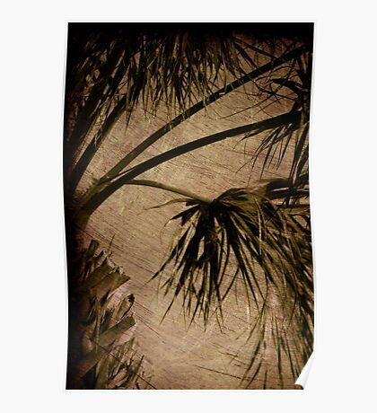 Vintage Palm Poster