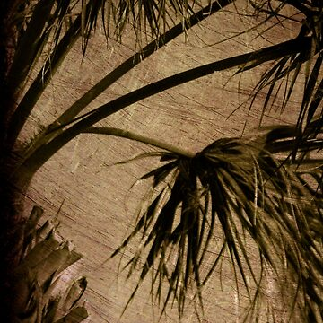 Vintage Palm by susanne49