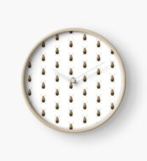 Neobrotica vittatipennis Clock