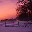 Winter sunset, Dalkeith Country Park, Scotland by Michael Marten