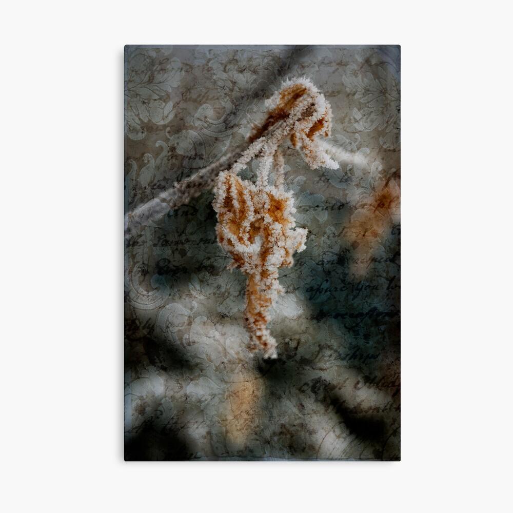 romantic frost Canvas Print