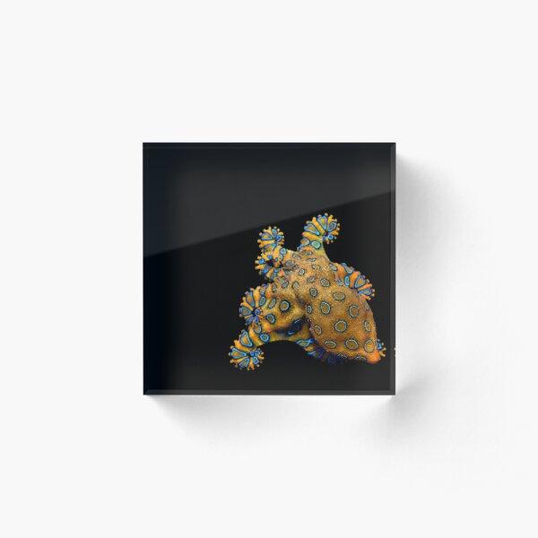 Blue Ring Octopus right skew  Acrylic Block