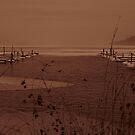 Winter Otsego by Bruce Haney