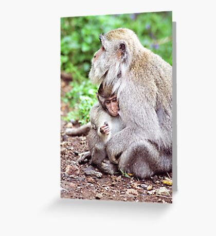 Macaque Mother and Baby Greeting Card