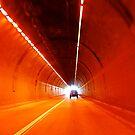 Tunnel  by Pamela Hubbard