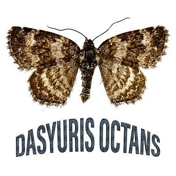 Dasyuris octans by boogeyman