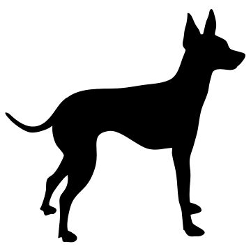 English toy terrier by Designzz