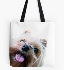 Silly Gracie (Hi Hello collection #1) Tote Bag
