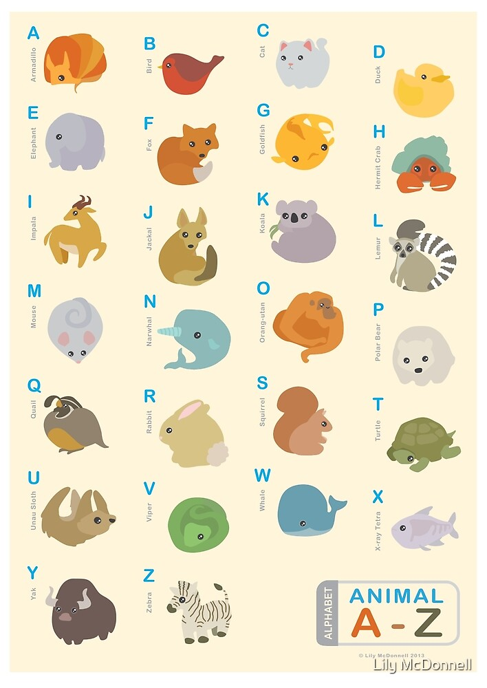 Animal Alphabet A-Z by Lily McDonnell