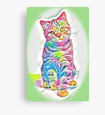 striped red british cat isolated on Canvas Print