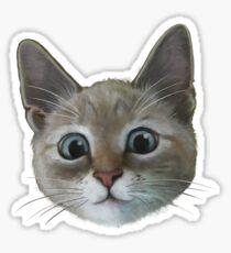 happy cat Glossy Sticker