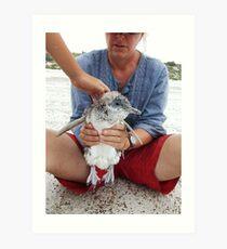 things you find on an australian beach Art Print