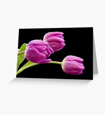 Flowers in The Rain Greeting Card
