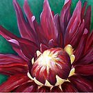 Red Hot Dahlia by Lynsey Cleaver