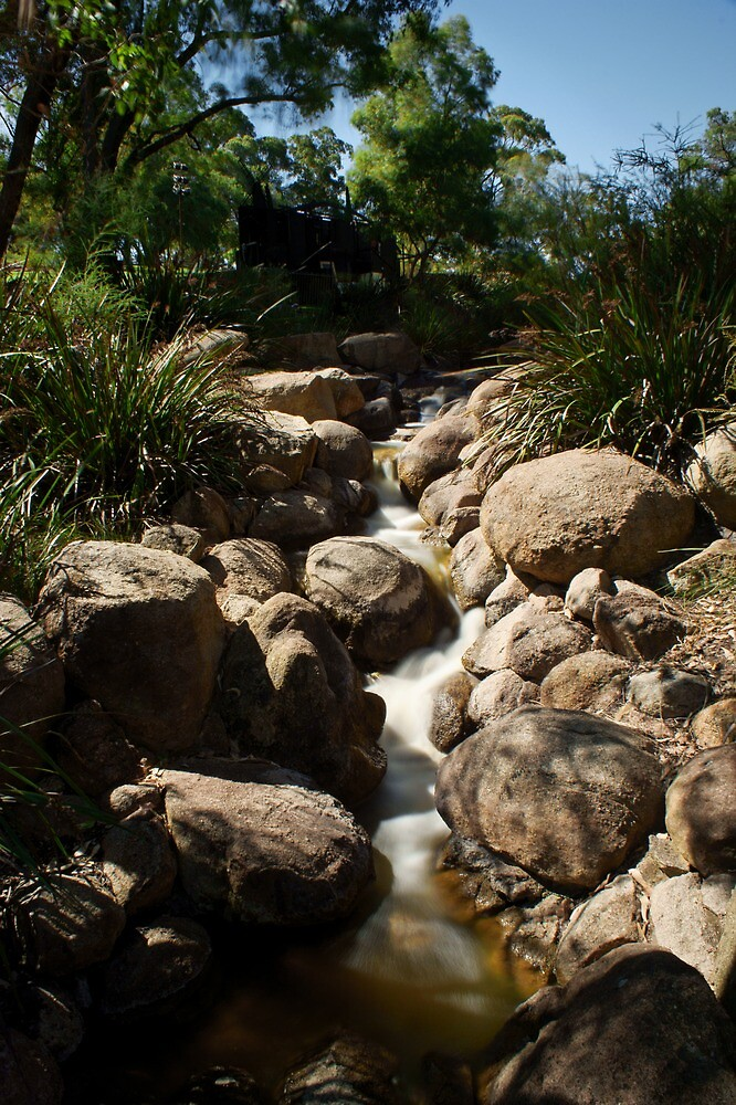 Running Water - Kings Park by mattsibum