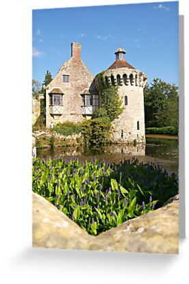 Scotney Castle by ColinBoylett