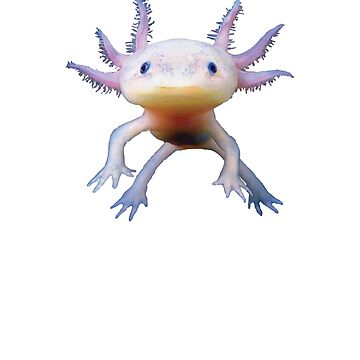 Cute Axolotl Salamander Amphibian Mexican Walking Fish by mpdesigns73