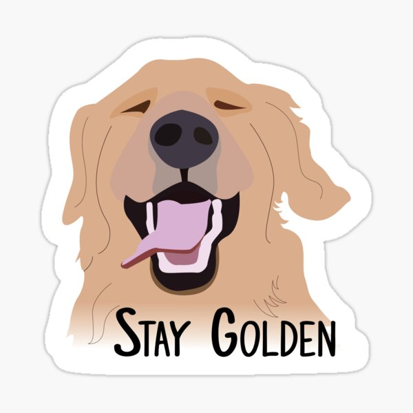 Stay Golden Retriever Sticker