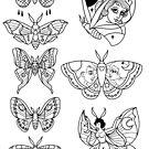 Moth Tattoo Flash by Ella Mobbs