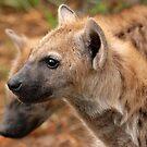 Okavango baby by Sharon Bishop