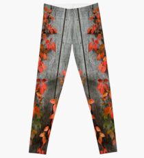 Autumn Creepers Leggings