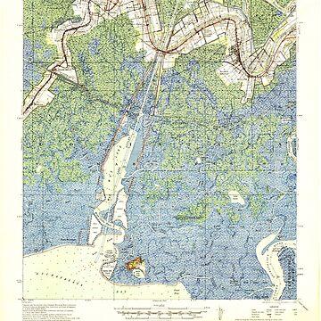 USGS TOPO Map Louisiana LA Belle Isle 334271 1941 62500 by wetdryvac