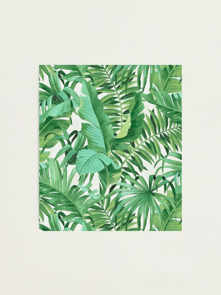 Alternate view of Green tropical leaves II Photographic Print