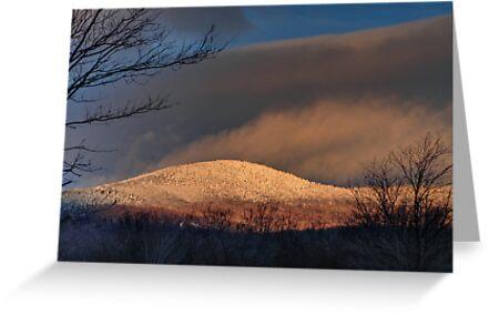 A Winter Morning by lloydsjourney