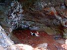 Hot Dog!! Pedestal Rock, Arkansas Ozark-St. Francis National Forest 6 23 2005 by NatureGreeting Cards ©ccwri