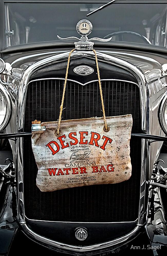 Vintage Cooled by Ann J. Sagel