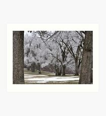 Wintry treescape Art Print