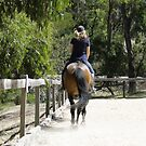 Trot on... time is a precious by Susie Walker
