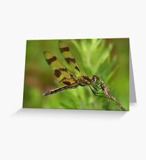 A Halloween Pennant Dragonfly. Greeting Card