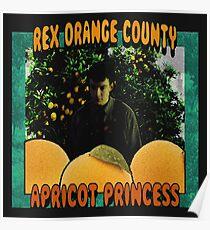 Apricot Princess Poster